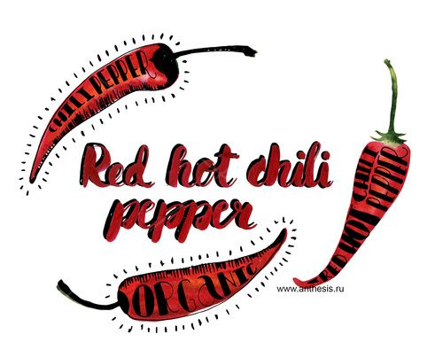 Watercolor food sketch. Chili peppers. Lettering.