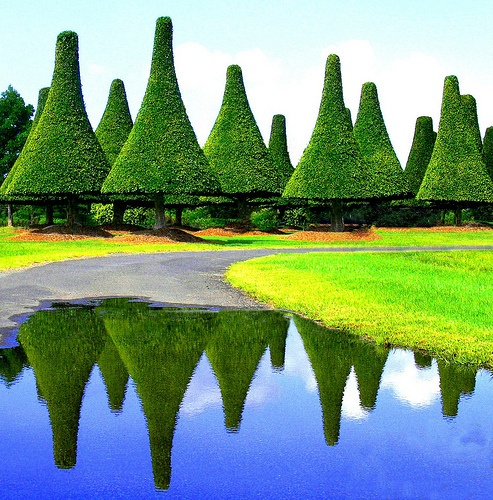 Topiary from the Melaleuca Station Memorial Gardens & Crematorium, in Australia.