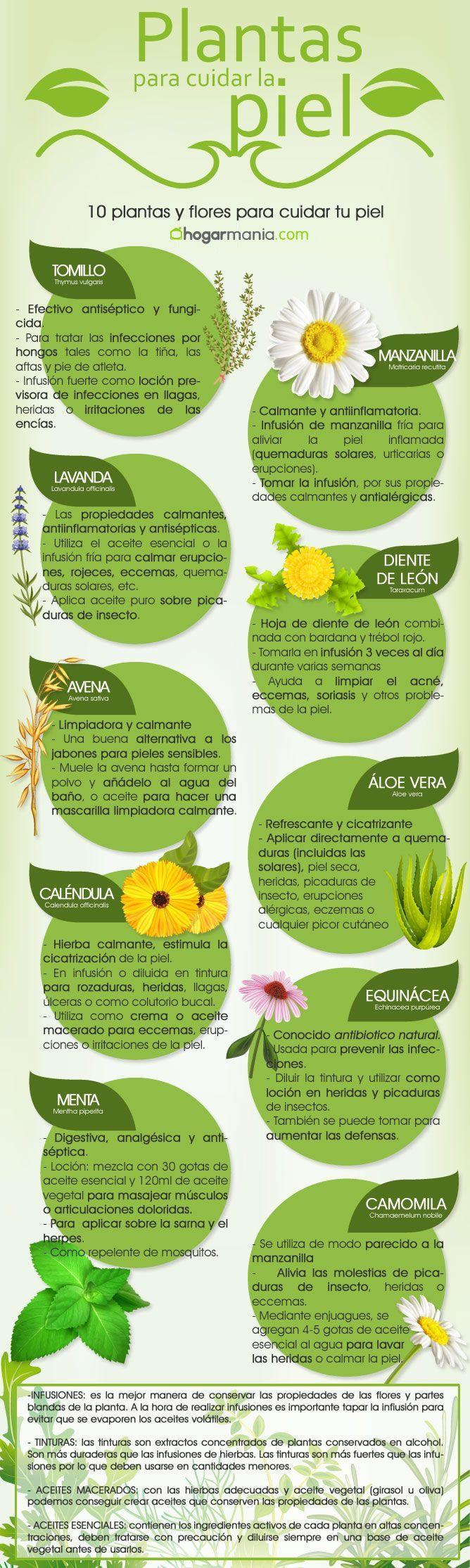 Os presentamos una infografía para, de un vistazo, conocer la 10 plantas y flores que ayudan a cuidar la piel, así como los remedios naturales para utilizarlas.