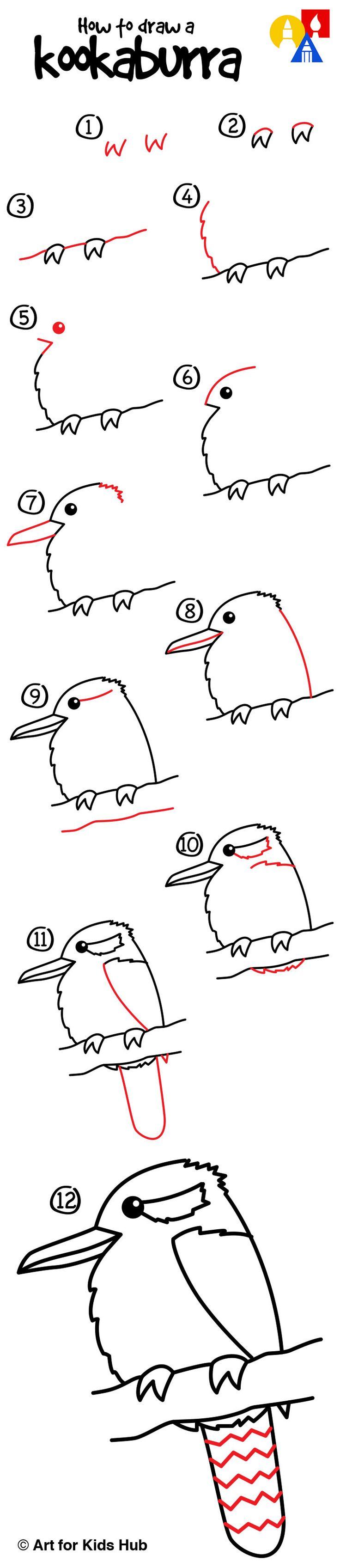 How to draw a kookaburra!