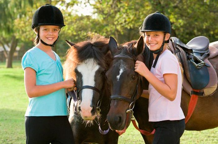 HorseQuest Learning Lesson: Horse Adult Leader Training and Educational Resource - eXtension