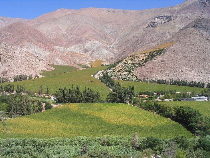 Uno de los cielos más despejados del mundo se encuentra en la cuarta región, en el Valle del Elqui, famoso por sus ruinas arqueológicas y su rica agricultura. Atractivos turísticos en: http://www.rutas365.com/chile-valle-del-elqui/