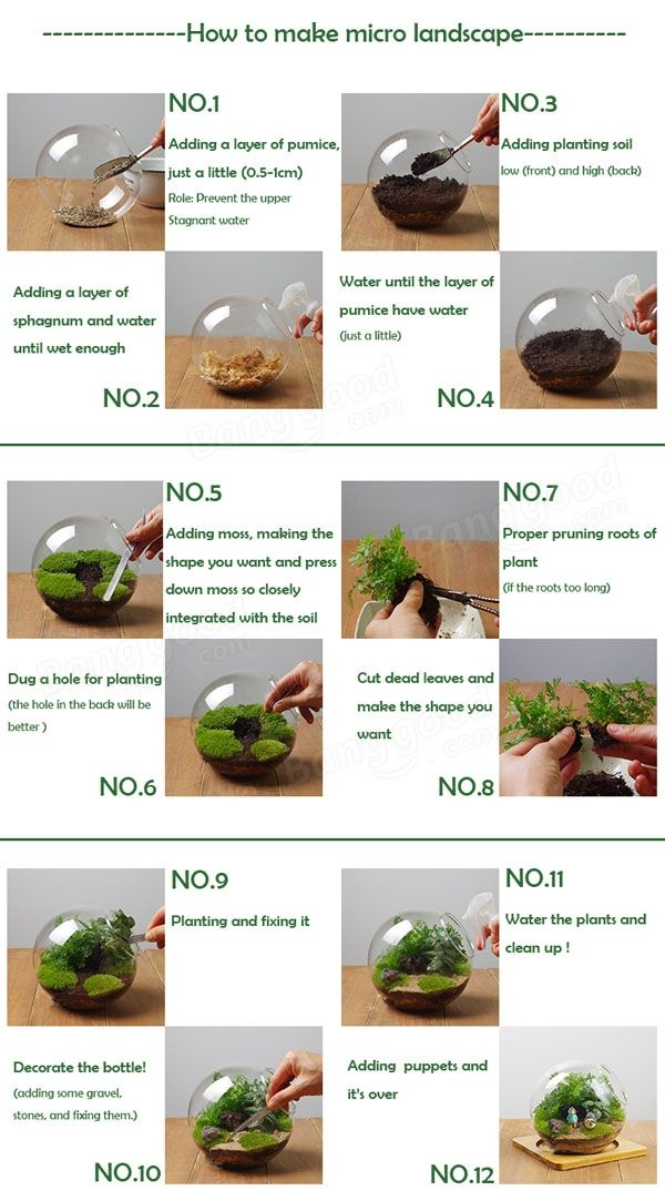 DIY Micro Landscape Plant Glass Hanging Ball With Iron Rack Home Decor at Banggood