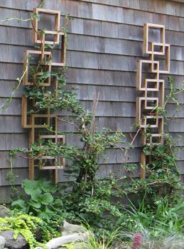 Trellis Ideas on Pinterest Flower vines Trellis