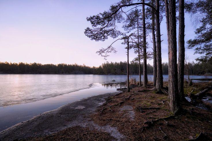 Dawn in Tyresta National Park Outside of Stockholm [OC][5390 x 3594]