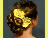 yellow Bridesmaid orchid flower hair pins