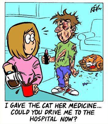 手机壳定制teva clearance flip flops Cat Humor So true It   s so hard giving cats medicine