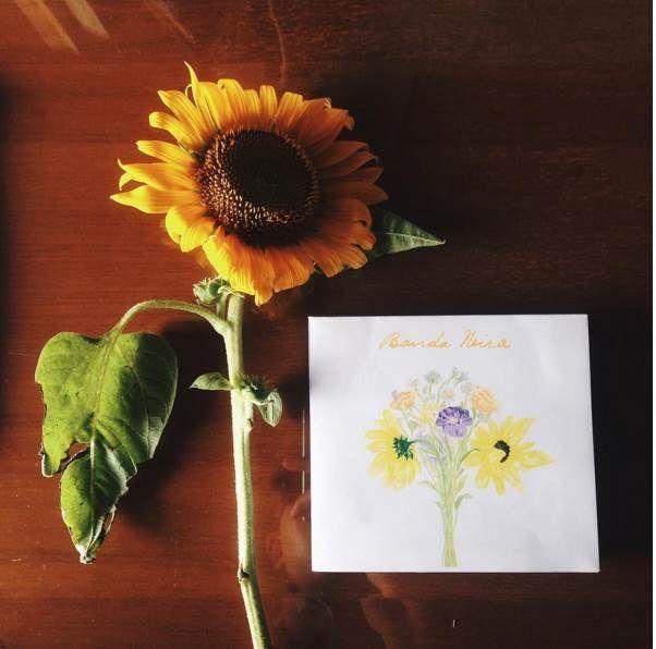 Banda Neira New Album: Yang Patah Tumbuh, Yang Hilang Berganti