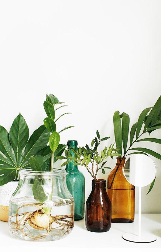 green and brown bohemian modern jars with leaves / sfgirlbybay