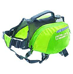 Daypak Dog Backpack Hiking Gear For Dogs by Outward Hound, Medium, Green