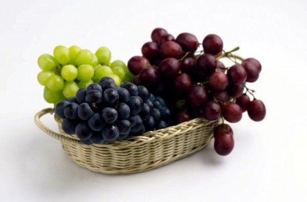 the-curative-properties-of-grapes
