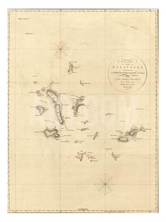 352 best IslandsGalpagos images on Pinterest  Galapagos islands