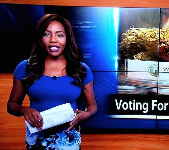 ALASKAN NEWS REPORTER QUITS HER JOB AFTER FINDING OUT SHE'S THE BOSS OF WEEDS!