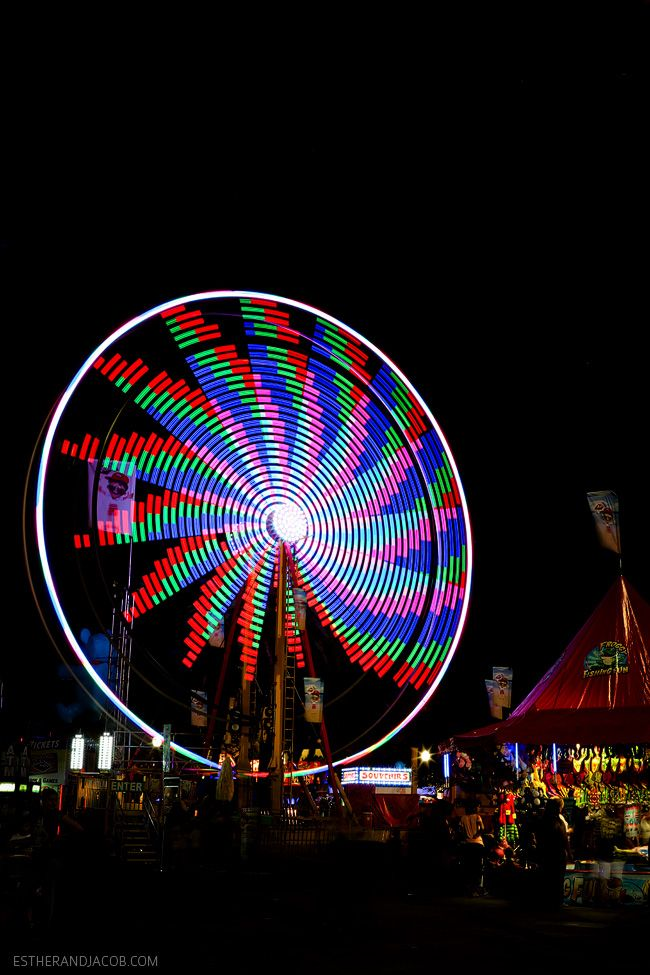 LA County Fair | Things to Do in LA - Local Adventurer >> San Diego Travel Blog