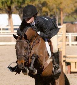 Small pony Hunter (: