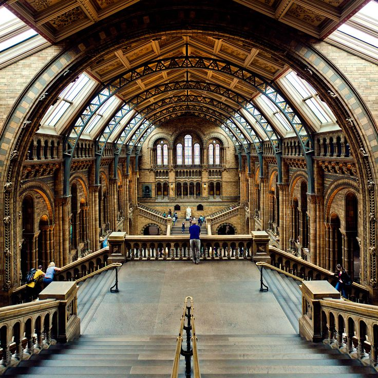 The Natural History Museum in London, the white statue at the top of the staircase is that of Charles Darwin (not to necessarily spend time there, but if its close enough i would like to take a picture infront of it :)