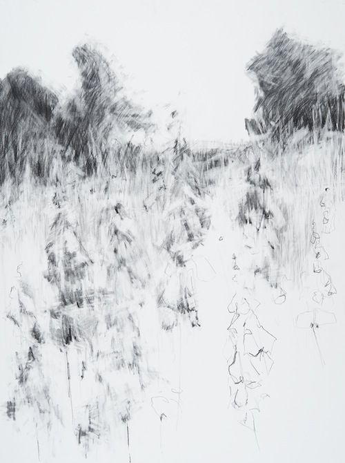 Hannah Woodman: Garden Drawings : Kestle Barton