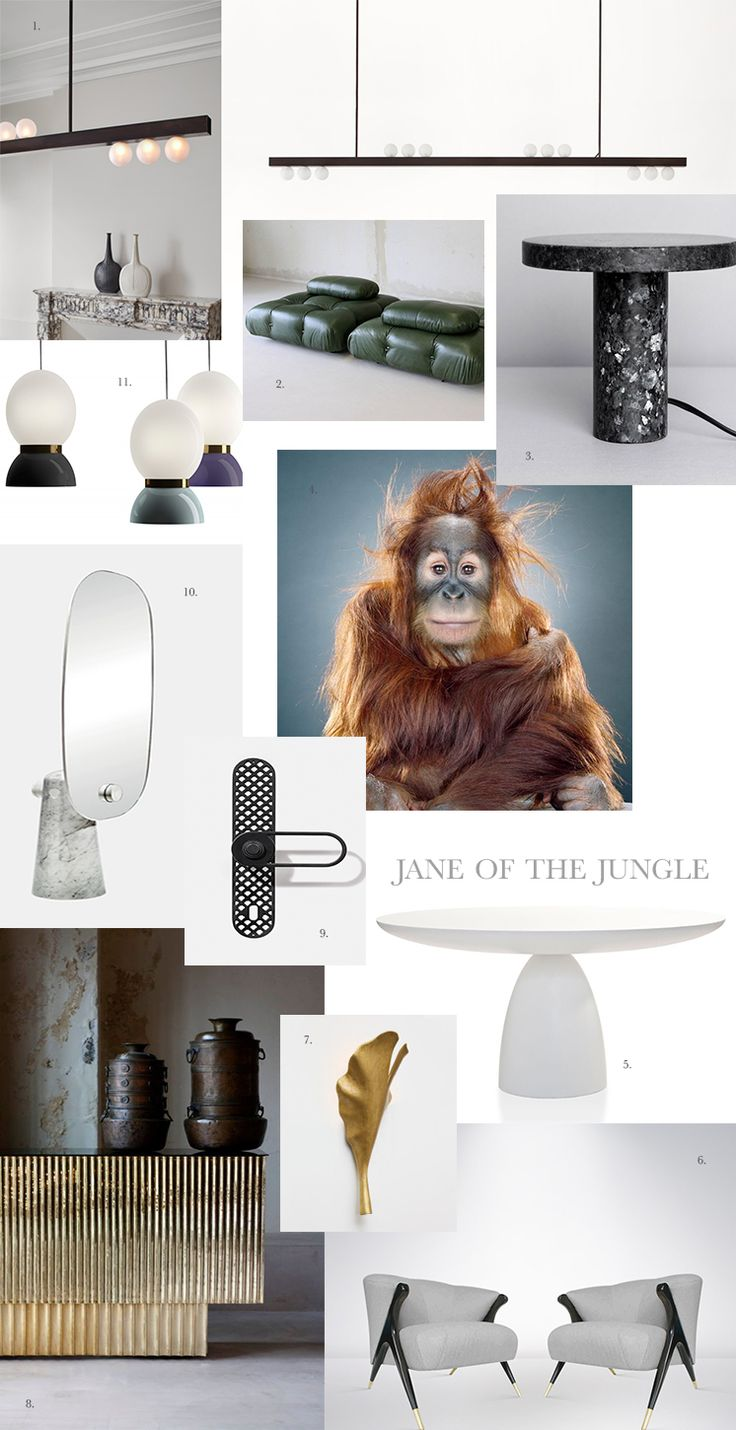 The est Style Hunter team at Decus Interiors are taking their cues from another busy lady this month with Jane of the Jungle in all of her golden glory.