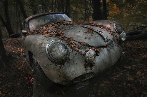 porsche is porsche: Vintage Cars, Inspiration Photography, Cars Riding, Still Life Photography, Red Forests,  Hippopotamus Amphibius, Porsche 356, Abandoned Places, Nice Cars