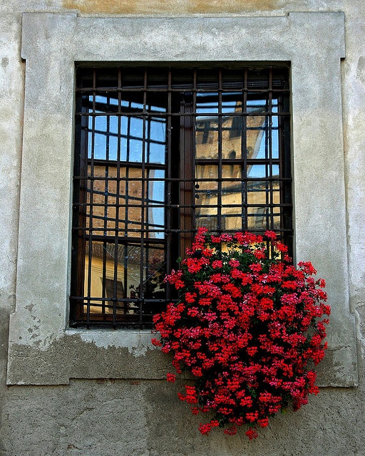 window in Ducal Palace , Mantova, Italy