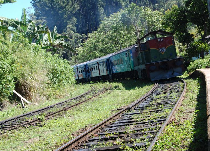 Train arriving to Ella tea hills (Wellawaya) in South Sri Lanka. Check our blog for full story of our South Sri Lanka Tour and Guide for Independent Travel in Southeast Asia. Here: http://live-less-ordinary.com/southeast-asia-travel/south-sri-lanka-tour-independent-travel