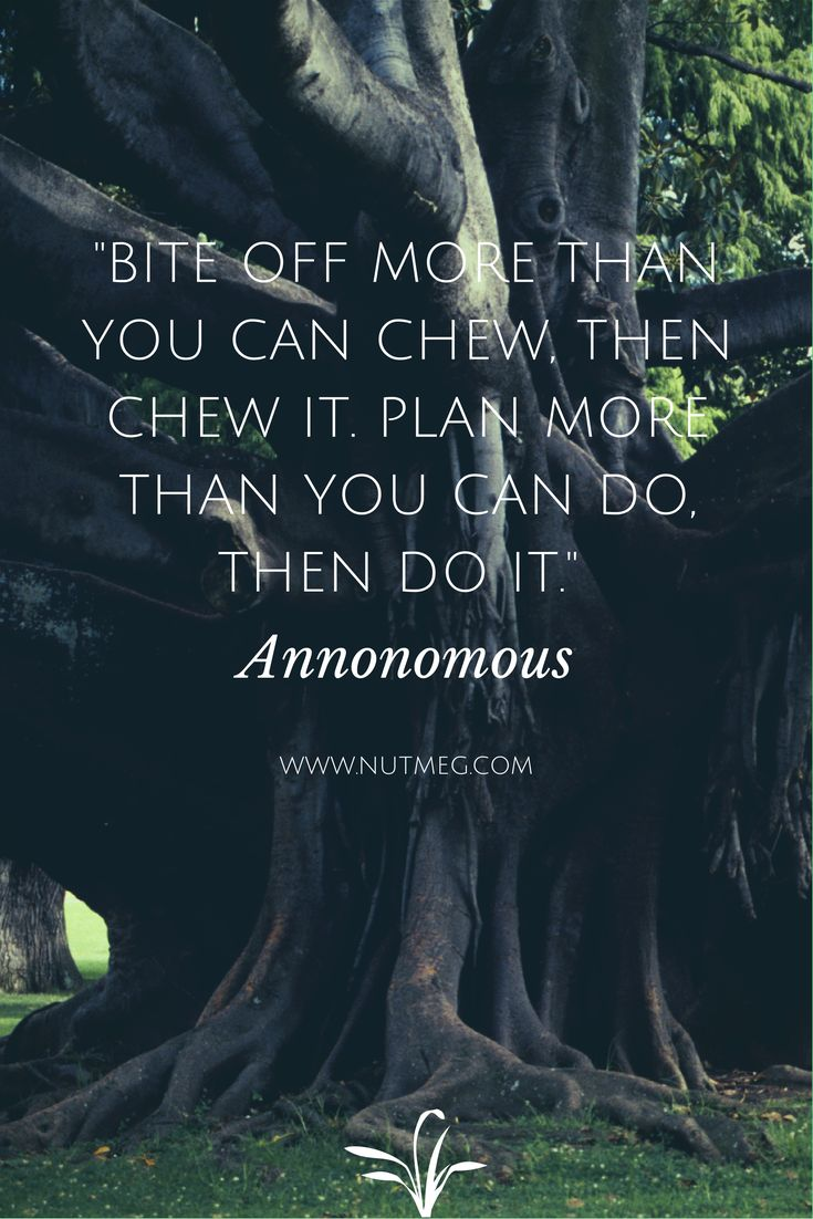 """Bite off more than you can chew, then chew, then chew it. Plan more than you can do, then do it."" - Anonomous"