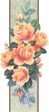 Peach roses flores - gravura
