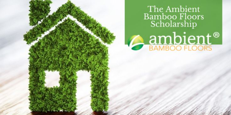 2020 Helptostudy Com 2021 Helping Student Admission And Financial Aid In 2020 Scholarships Essay Contests Environmental Architecture
