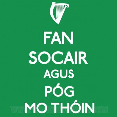 Fan Socair Agus Póg Mo Thóin - Womens T-shirt or Hoodie in a variety of colours size XS to XL