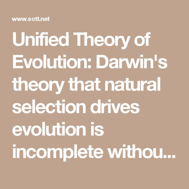 essays on darwins theory