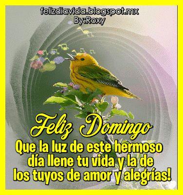 El Mundo de los Gifs: Feliz Domingo (ver más...)