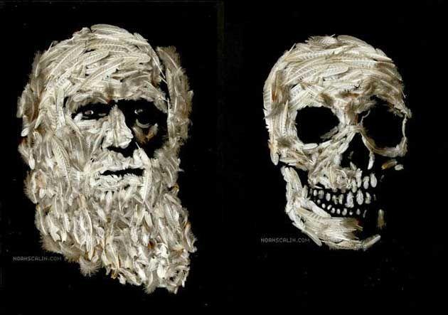 さまざまな素材で表現された著名科学者の肖像画とスカルビジュアル「Natural Selection」