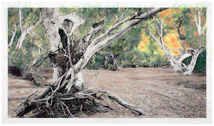 National Aboriginal & Torres Strait Islander Art Award 2014 - 'Works on Paper' - AWAYE! - ABC Radio National (Australian Broadcasting Corporation)