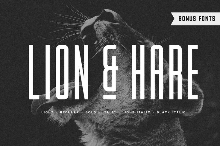 Download 50+ Best Condensed & Narrow Fonts of 2019 | Condensed font ...