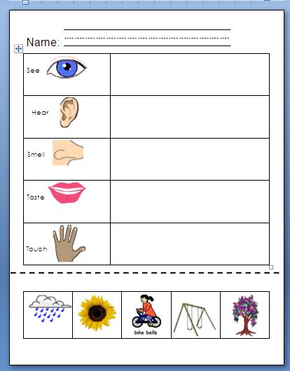 Our Five Senses Worksheets | JoysofSpring - Using My 5 Senses
