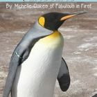 This unit includes 6 lesson plans that are common core aligned to go with the book, Penguins by Emily Bone, but can be used with any penguin nonfic...