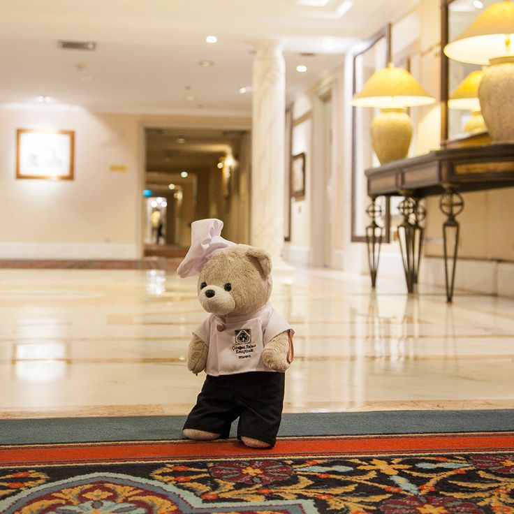 This is Çırağan, a whole new world! Chef Teddy ventures out to the corridors, ready to explore the hotel. #ChefTeddy