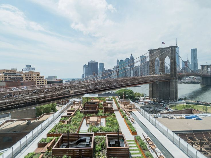 The view from 60 Water Street in Brooklyn, an apartment building with a private rooftop garden.