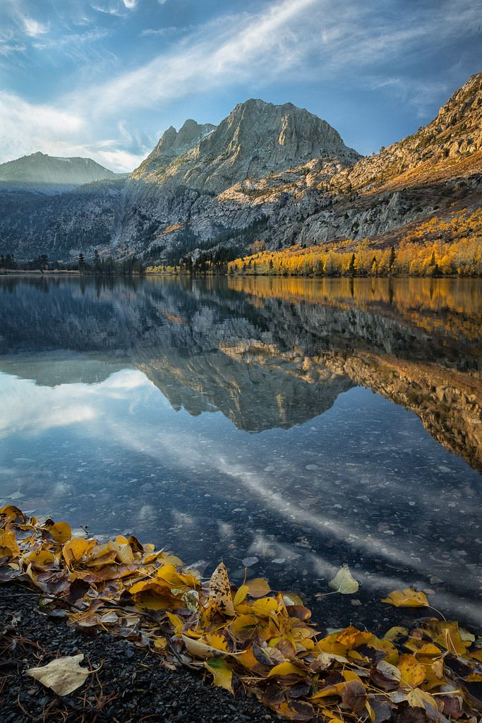 Autumn Morning at Silver Lake (California) by Alice Cahill