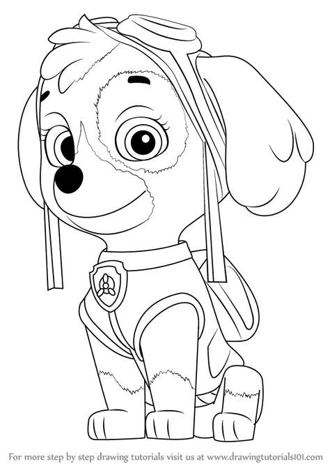 Learn How to Draw Skye from PAW Patrol PAW Patrol Step