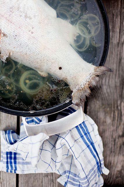 """Inkokt lax ur """"Fisk året om""""  Foto: Karin Lindroos"""