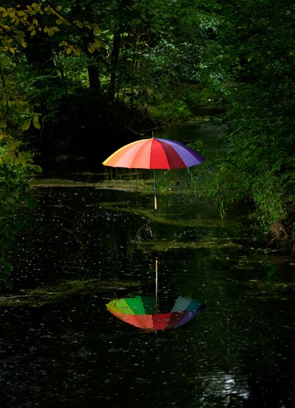 celebrate a rainy summer day: Photos, Kleiner Photography, Umbrellas, Photography Ads, Forest, Rainbow, Colour Palette, Carl Smaller