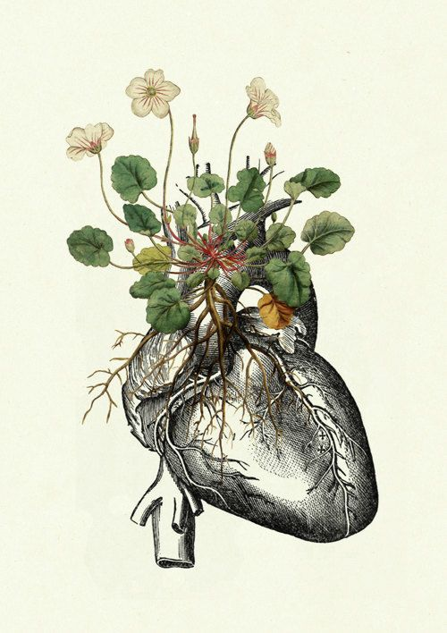 Flowers growing on Anatomical Heart Love by emporiumshop on Etsy