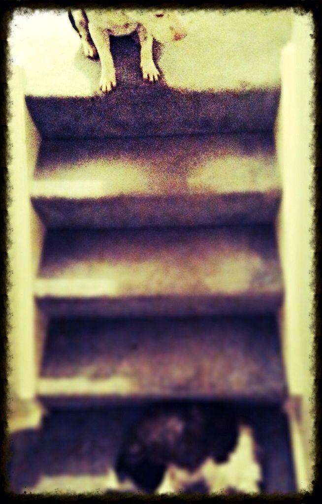 Equilibrium #onelove #hardcore