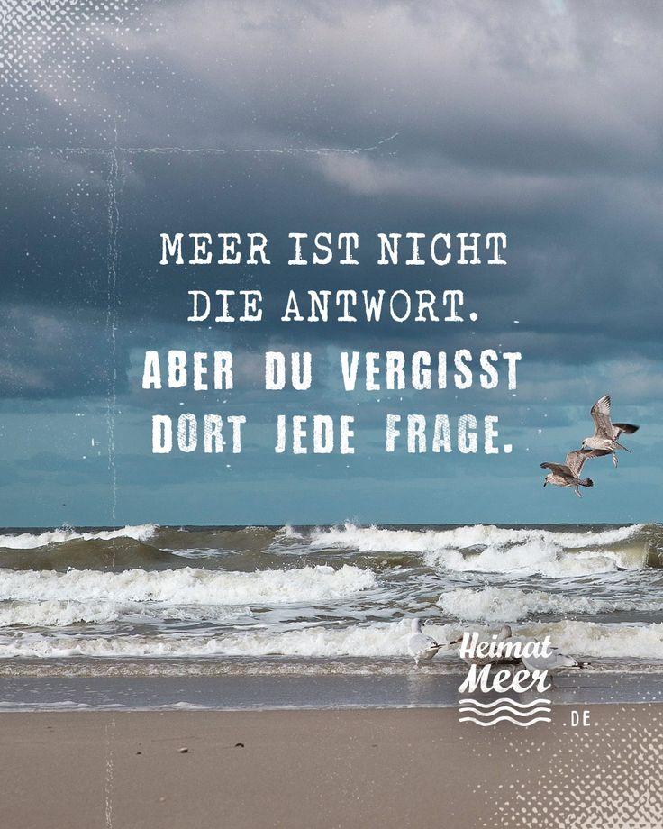 Meer tut gut! 💯🌊💙 Mee(h)r für alle, die das Meer lieben auf Heimatmeer…
