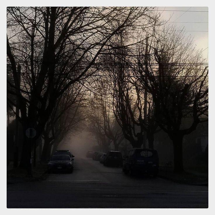 Whatever happened happened. Que sera sera.  .  .  .  . .  .  .  .  .  .  . #vancouver #vancity #yvr #vancitybuzz #vancouverisawesome #explorebc #vancityhype #bc #filmcellman #vancouverbc #beautifulbc #veryvancouver #igersvancouver #canada #hellobc #vancouvercanada #dailyhivevan #landscapes #scenery #panorama #winter #brokenenglish #foggy #foggyday #fog #mist #misty #vancouverfog #fogupvancity #foggyvan