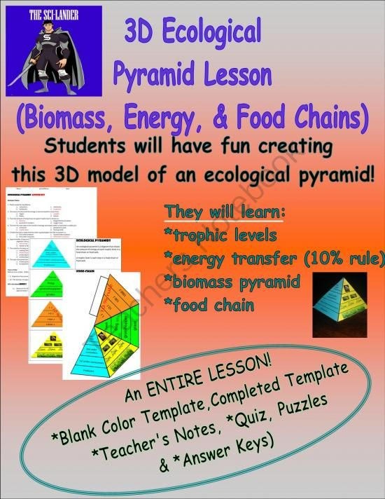 3D Ecological Pyramid Model Lesson: Biomass, Energy and Food Chain from The Sci-Lander on TeachersNotebook.com -  (10 pages)  - Students will produce an ecological pyramid in this lesson that shows biomass, energy levels, and food chains.