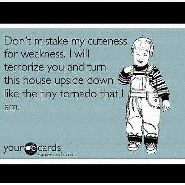 Kids...gotta love em...Kids Gotta, Mason, 2 Sons And A Daughters, 2 Years Old, Funny Little Girls, So True, Stuff For A One Years Old, Little Boys, Tiny Tornados