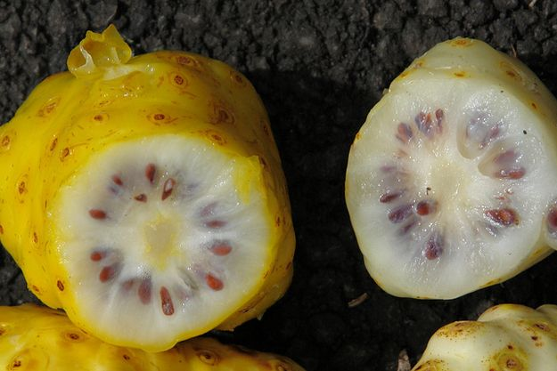 Noni Fruit | 20 Awesome Fruits You've Never Even Heard Of...know for its foul smell and nasty taste it's usually used in medicinal compounds