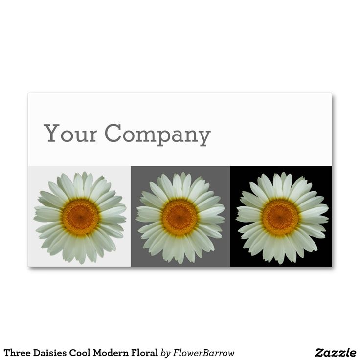 Three Daisies Cool Modern Floral Double-Sided Standard Business Cards (Pack Of 100)